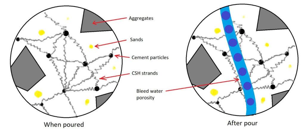Bleed water porosity in concrete